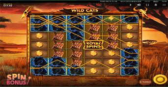 wild-cats-free-spins
